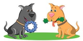 Twee zwart en bruine honden zitten op het gras en de greep in hun mout Royalty-vrije Stock Fotografie