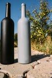 Twee zwarte en grijze flessen op de weg van de tegels, het dorp, landelijk alcoholisme, dronkenschap alcoholische ziekte natuurli royalty-vrije stock foto