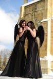 Twee zwarte engelen royalty-vrije stock foto's