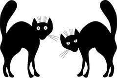 Twee zwarte katten. Stock Foto