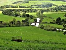 Tweed de rivière près de Peebles dans les frontières écossaises, R-U images libres de droits