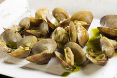 Tweekleppige schelpdieren met groene saus Royalty-vrije Stock Foto's