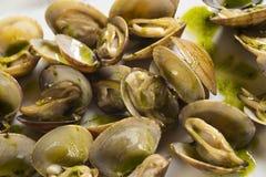 Tweekleppige schelpdieren met groene saus Royalty-vrije Stock Afbeelding