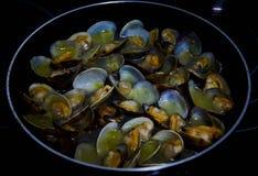 Tweekleppige schelpdieren zeer heerlijk voedsel van Spanje royalty-vrije stock afbeelding