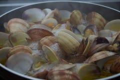 Tweekleppige schelpdieren zeer voedings stock foto's