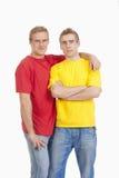 Tweeling broers royalty-vrije stock foto's