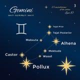 tweeling Hoog gedetailleerde vectorillustratie 13 constellaties van de dierenriem met titels en eigennamen voor sterren Royalty-vrije Stock Afbeeldingen