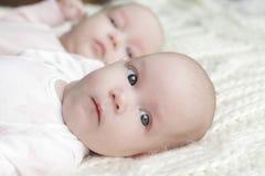 Tweelingbabymeisjes royalty-vrije stock foto's