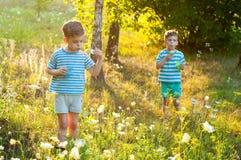 Tweelingen in de bloemweide Stock Afbeeldingen