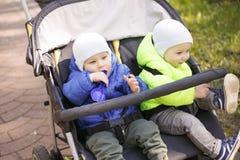 Tweelingen in een kinderwagen in het park stock fotografie