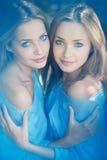 Tweelingen in het bos Stock Foto
