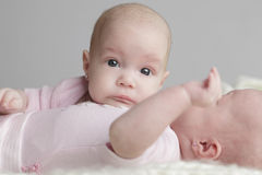 Tweelingenbabys stock afbeeldingen