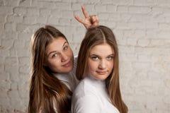 Tweelingzusters portret Stock Foto