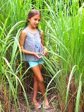 Tween Girl with Braids Poses In Tall Grass royalty free stock image