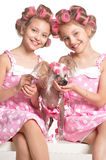 Tweenie girls  in hair curlers  with dog Royalty Free Stock Images