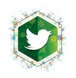 Tweet ptasiej ikony rośliien wzoru zieleni sześciokąta kwiecisty guzik royalty ilustracja