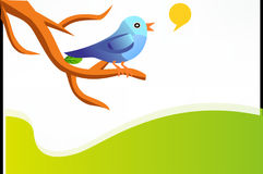 Tweet, Twitter, Bird, Blue, Twig Royalty Free Stock Photos