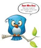Tweeter-blauer Vogel geöffnet stock abbildung
