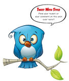 Tweeter Blue Bird Open Stock Photos