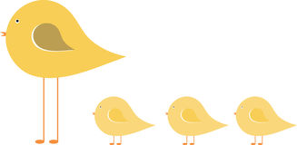 Tweeting Chicks Stock Photography