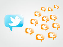 Tweeting to followers. Tweeting bird to other followers Royalty Free Stock Photo