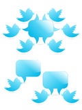 Tweeting to followers. Tweeting bird to other followers Stock Images
