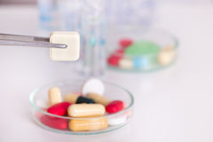 Tweezers holding pill above petri dish Stock Photography