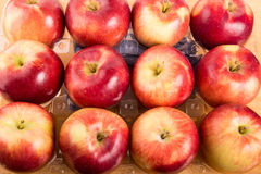 Twelve Apples In Plastic Tray Royalty Free Stock Photography