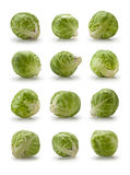 Twelve brussels sprouts Royalty Free Stock Photography