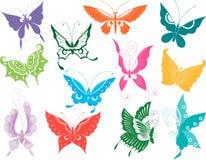 Twelve butterflies Stock Image