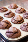 Twelve chocolate muffins cooling off Stock Image
