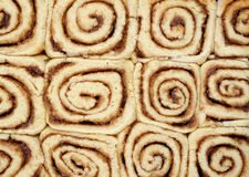 Twelve Cinnamon Buns Royalty Free Stock Photo