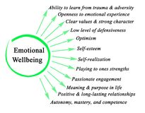 Components of Emotional Wellbeing. Twelve Components of Emotional Wellbeing Stock Photography