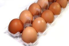 Twelve eggs in clear package.  Stock Photo