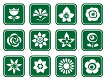 Twelve flower symbols Stock Image
