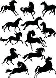 Twelve horse silhouettes Royalty Free Stock Images