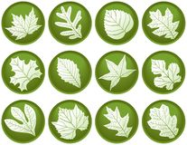 Twelve Leaf Buttons Stock Photography