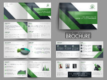 Twelve Pages Modern Multi-Purpose Brochure Set. Stock Image