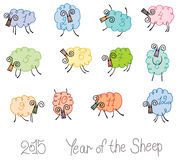Twelve sheep. Year of the Sheep. 2015 Circle of twelve sheep Royalty Free Stock Photography