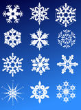 Twelve snowflakes Royalty Free Stock Photo
