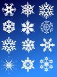 Twelve snowflakes Royalty Free Stock Photo