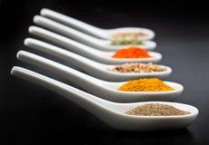 Twelve spices Stock Image