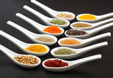 Twelve spices Stock Images