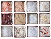 Free Twelve Types Of Sea Salt In Square Bowls Royalty Free Stock Photography - 8593717