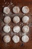 Twelve wholemeal biscuits with yogurt , whole wheat flour , oats , hazelnuts and icing sugar Stock Image