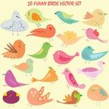 Twenty birds cartoon set Royalty Free Stock Images