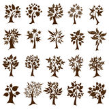 Twenty cute decorative trees. Thanksgivf Stock Photo
