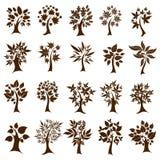 Twenty cute decorative trees. Thanksgivf Stock Photo