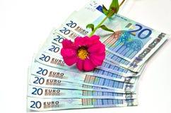 Twenty euro banknotes Stock Image