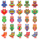 Twenty five amusing colorful owls Royalty Free Stock Images